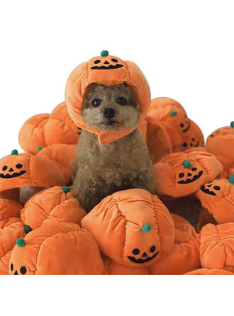 gotyk Halloween Dynia Plusz Kostiumy zwierzaków