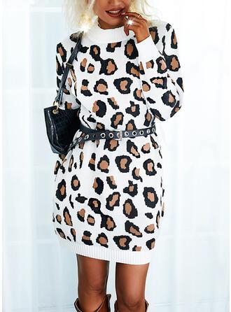 lampart Okrągły dekolt Nieformalny Sukienka sweterkowa