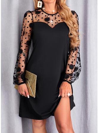 Jednolity Koronka Długie rękawy shim sleeve Pokrowiec Nad kolana Mała czarna/Elegancki Sukienki